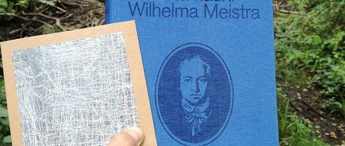 """Bildungsroman, czyli """"Lata nauki Wilhelma Meistra"""" J.W. Goethego"""