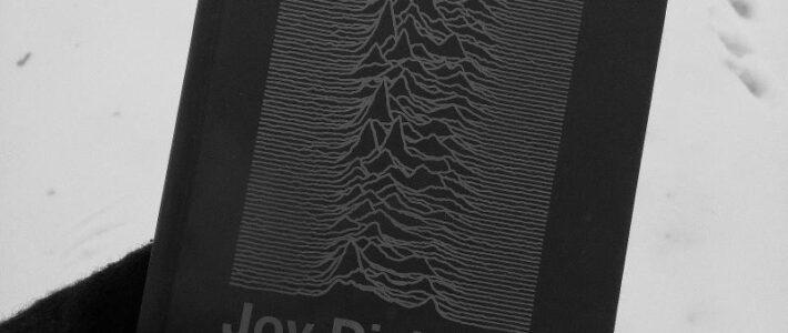 Joy Division - Przenikliwe światło, słońce i cała reszta