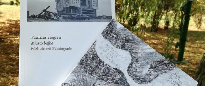 Miasto bajka - recenzja